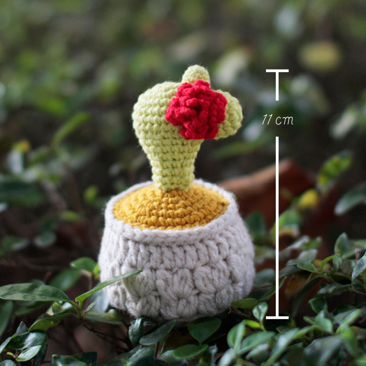 有機棉編織仙人掌